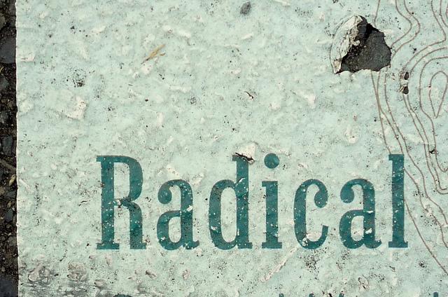 """Lezing 'Van individualisering naar radicalisering"""""""