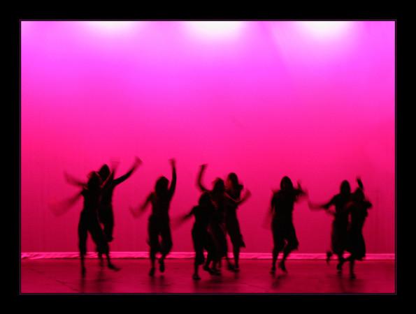 Dans als typologie voor de vrijwilligersorganisatie