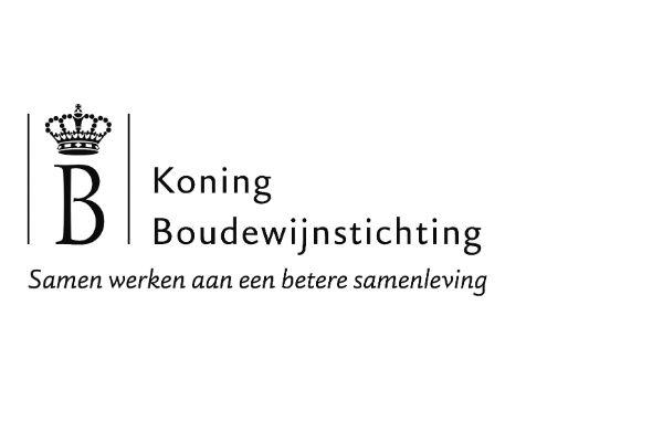 Koning Boudewijnstichting 2015 in cijfers